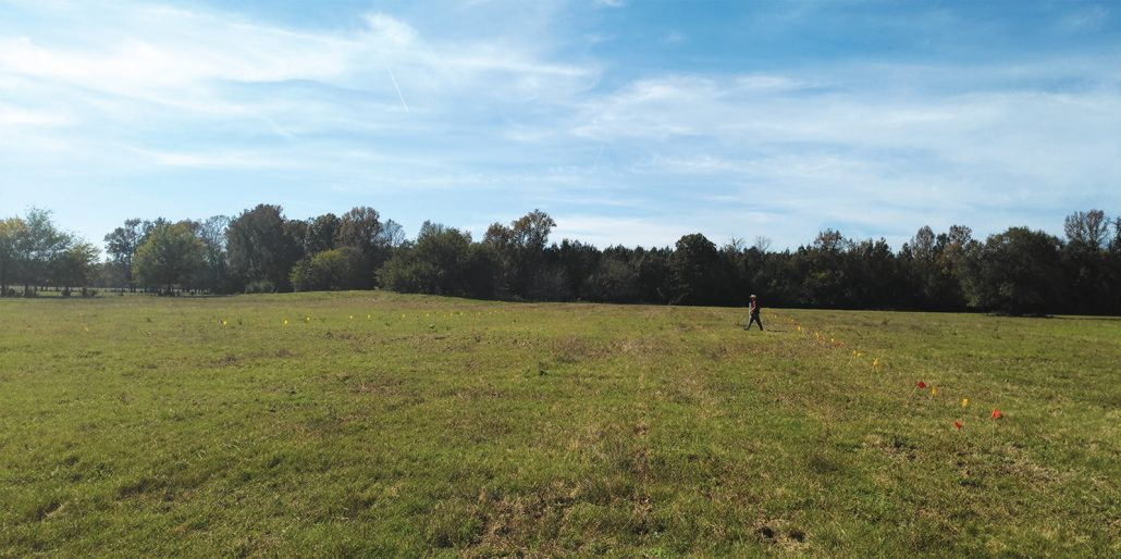 Geophysical survey at Lockesburg Mounds in 2018. ARAS-SAU digital photo P_20181029_140456.